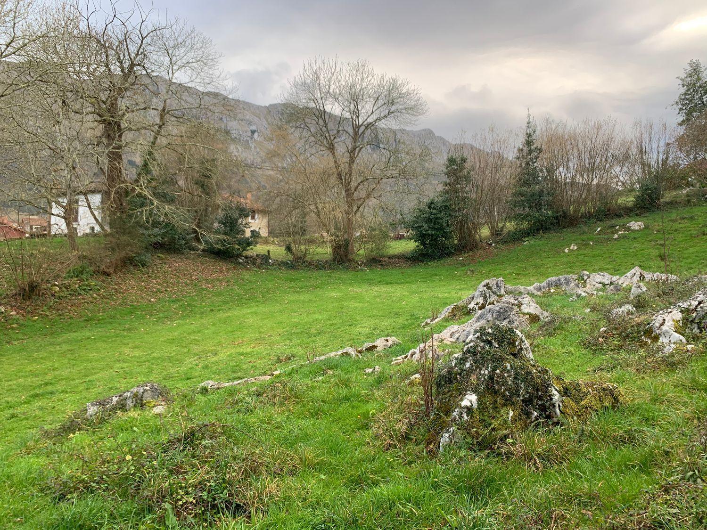 Terreno en Venta en Calle La Pereda, Área de Llanes, Asturias  REF:92661881