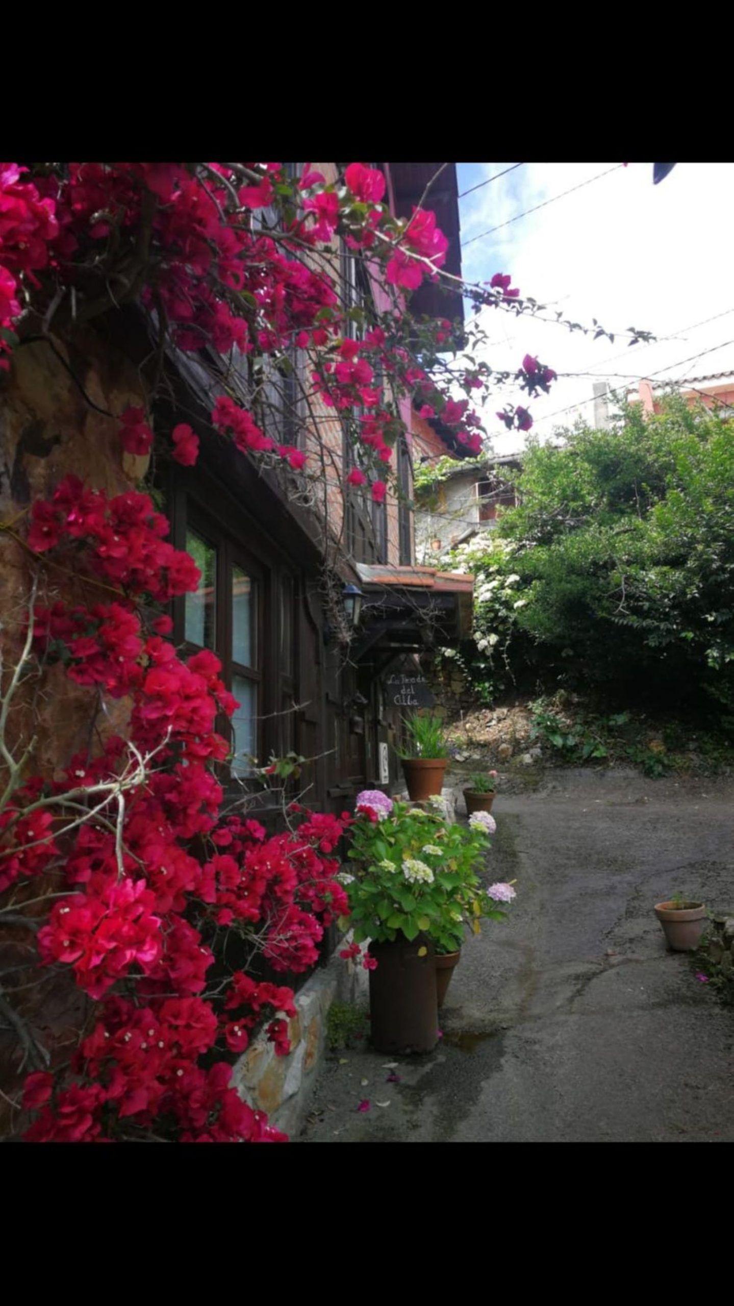 Chalet en Venta en Calle Alea, Área de Ribadesella, Asturias  REF:93498276