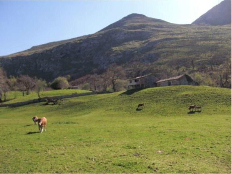 Casa rústica en Venta en Calle Porrua, Área de Llanes, Asturias  REF:93558000